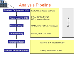 study Pipeline in Next generation sequencing data analysis training courses