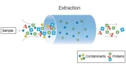 Study protein-preparation Molecular Biology Training Courses