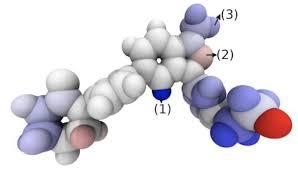 Protein & Ligand Optimization